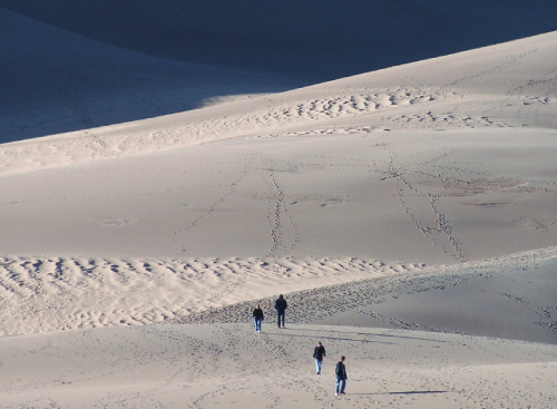 Caption: The Great Sand Dunes